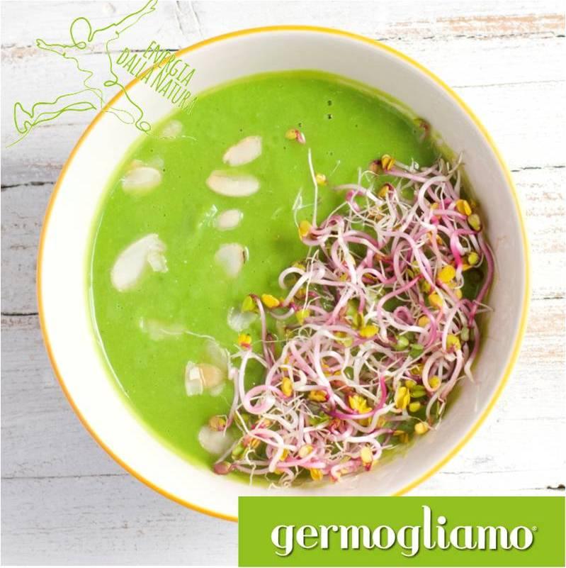 ricette vegane coi germogli roma