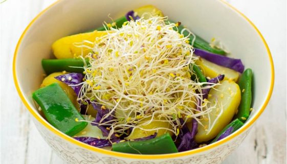 patate-fagiolini-germogli-alfalfa-cavolo