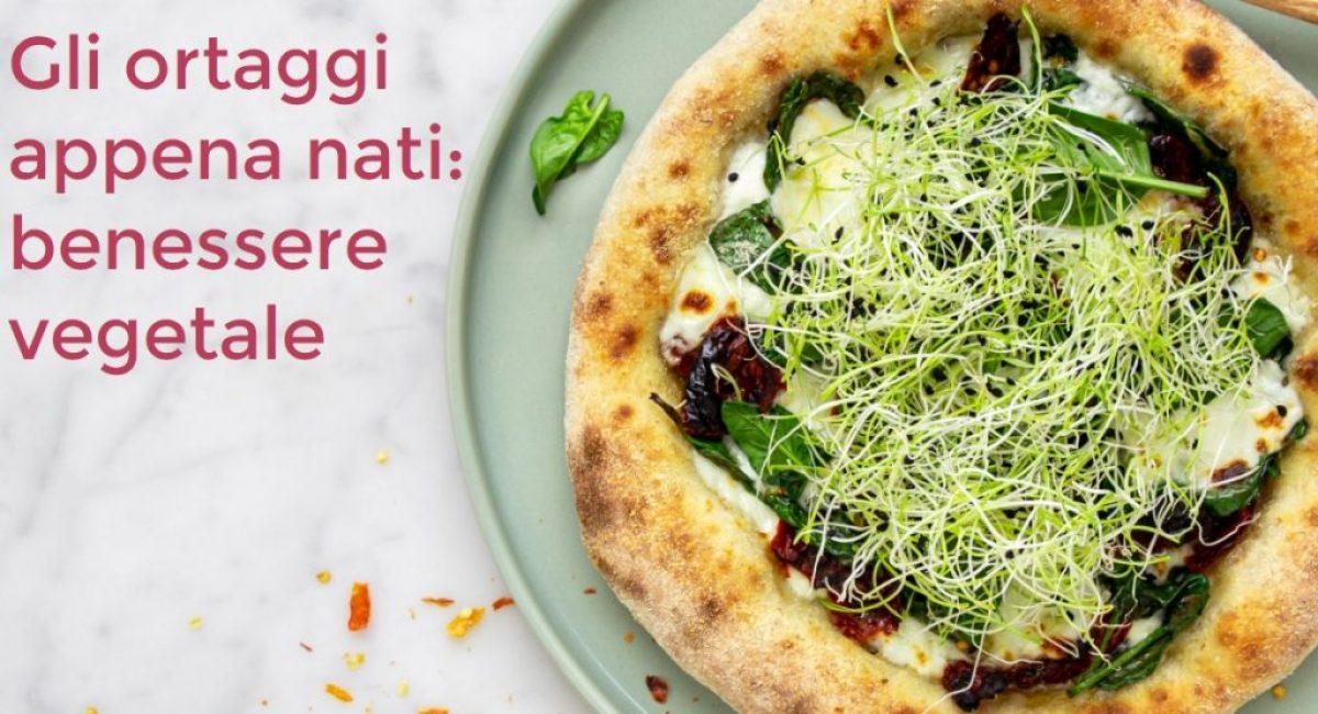 ricetta-pizza-germogli-porro-1